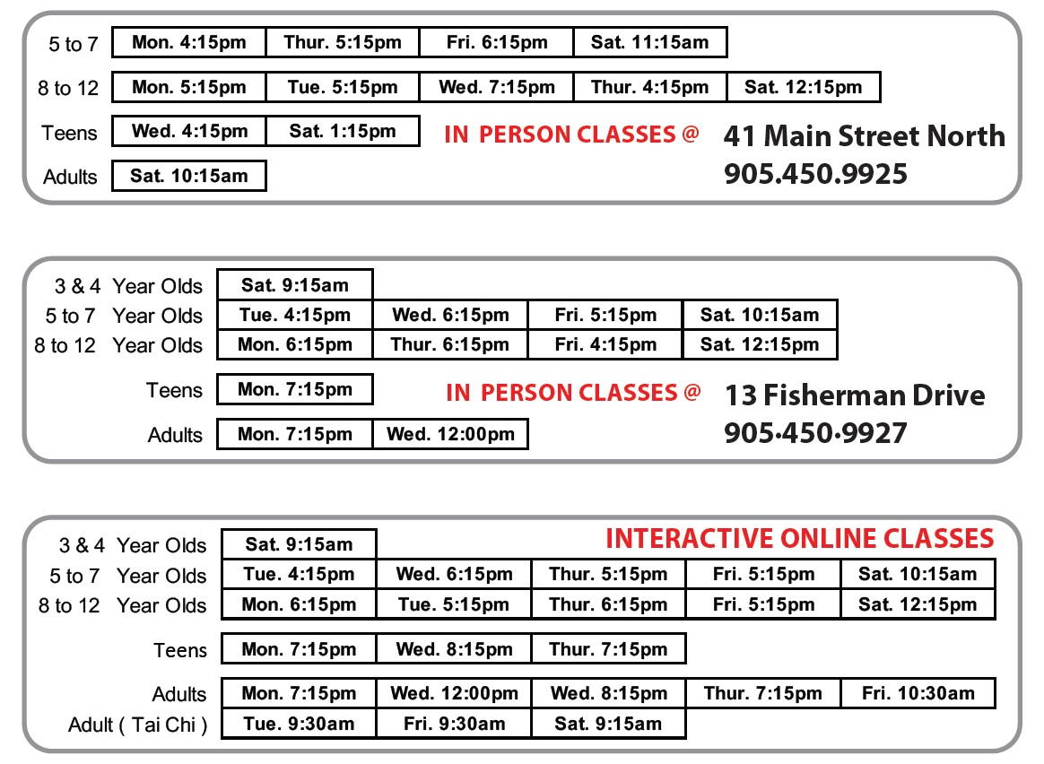 Martial Arts Schedule for New AMAdojo students in Brampton